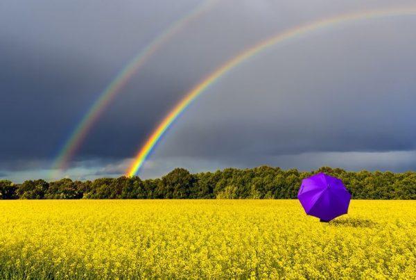 Tęcza na polu parasol Fotolia 204497733 S compressor 600x403 - Bardzo intrygujący kolor