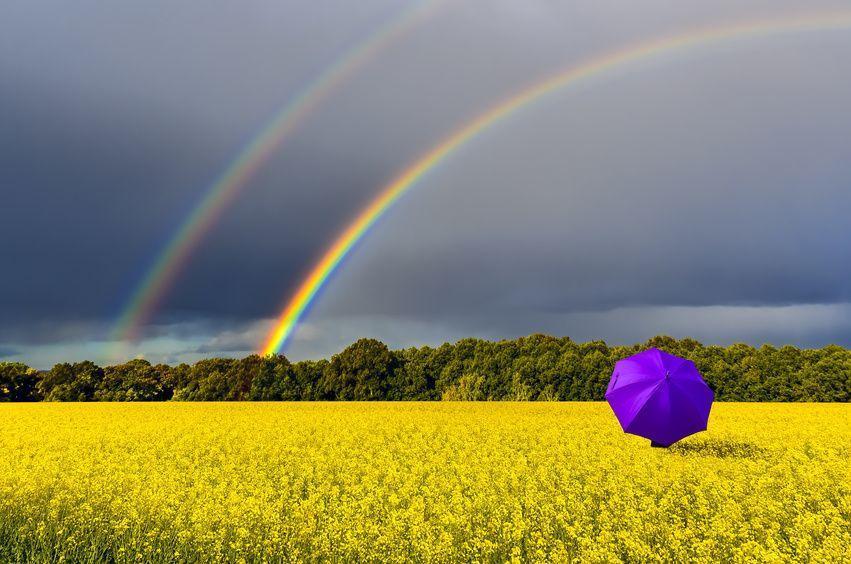Tęcza na polu parasol Fotolia 204497733 S compressor - Bardzo intrygujący kolor